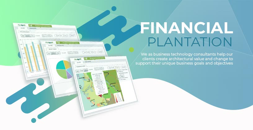 Financial for Plantation